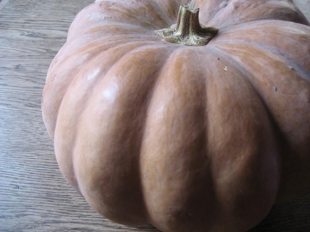organic vegetables at my door : pumpkin soup