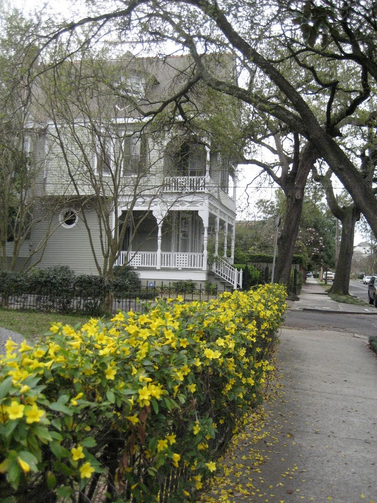 new orleans and buildings