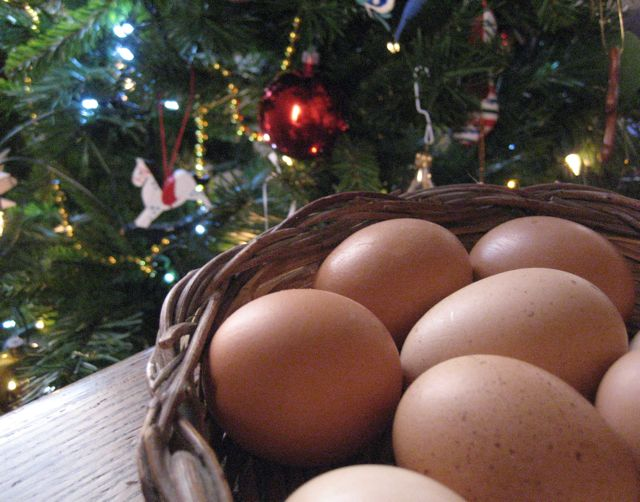 carbonara:  eggs as christmas gift