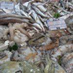 seven fishes in bari