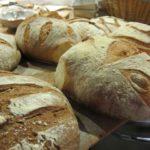 bread making with gabriele bonci