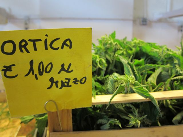 overcoming fear of nettles: frittata di ortiche