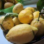lemon thyme gelato