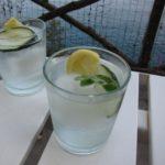 gillian's {positano} gin + tonic