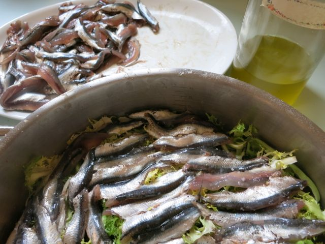 Sarde con l'indivia - Sardines and Endive