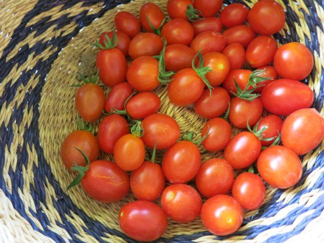 Cherry Tomatoes www.ElizabethMinchilliInRome.com