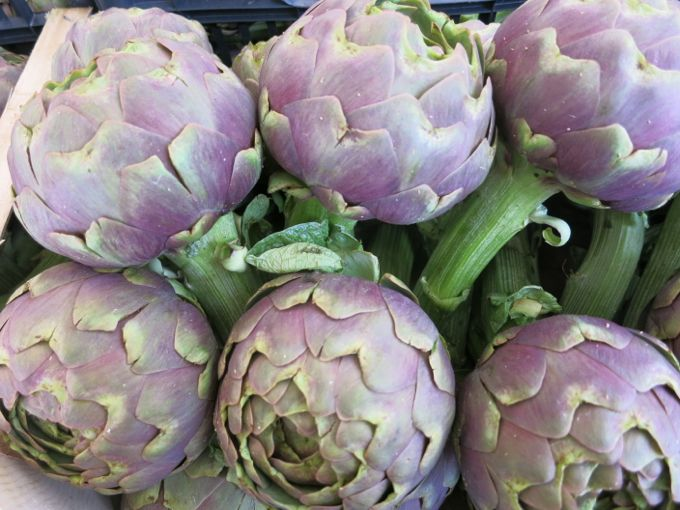 Artichokes for Raw Artichoke Salad