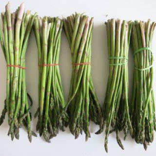 asparagus + mushroom {lasagna}