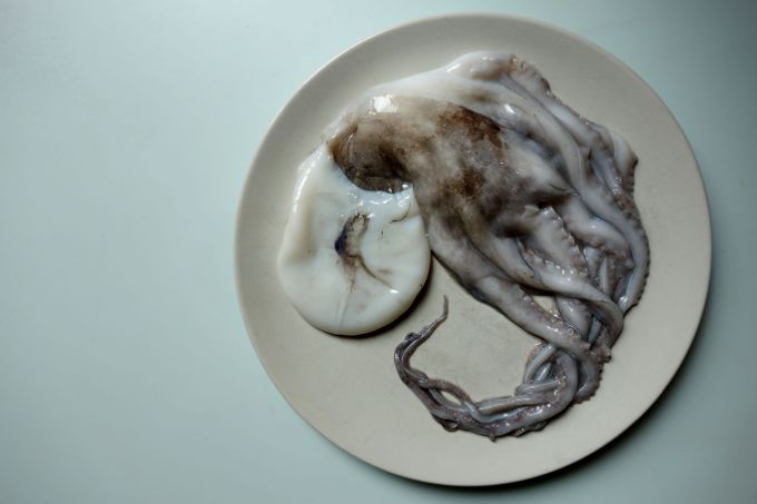 Octopus for Octopus and Celery Salad