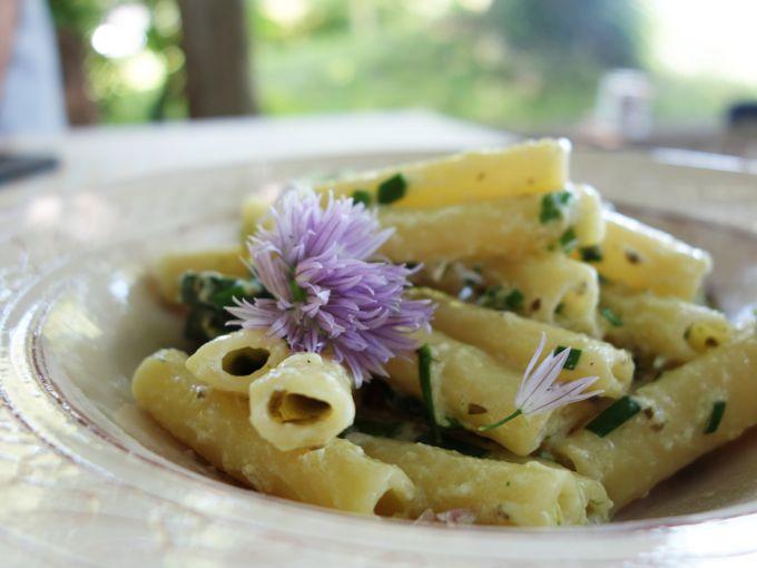 Pasta with Zucchini, Ricotta and Rosemary - 52