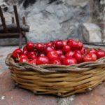 marsala cherry cake