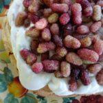 mulberry pavlova