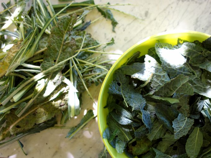 kale cavolo nero how to cook
