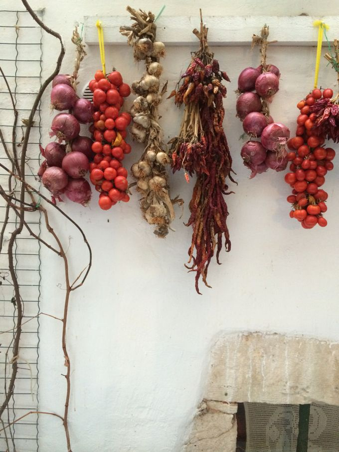 Cibus, hanging onions