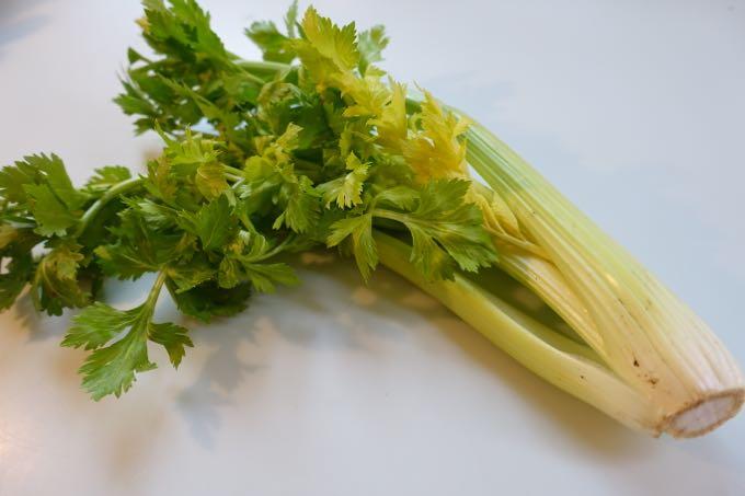 Celery_Elizabeth_MInchilli