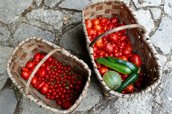 Tomatoes, Elizabeth Minchilli in Rome