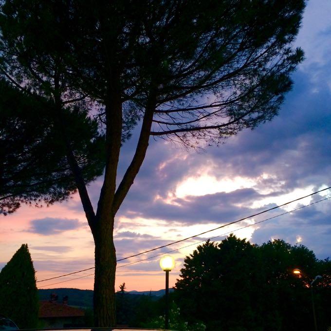 Sunset, Rosa dei Venti