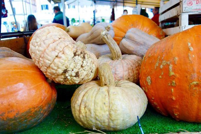 Pumpkins at Campo dei Fiori Elizabeth Minchilli - 1