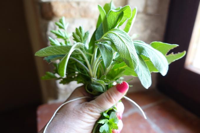 Herbs Elizabeth Minchilli